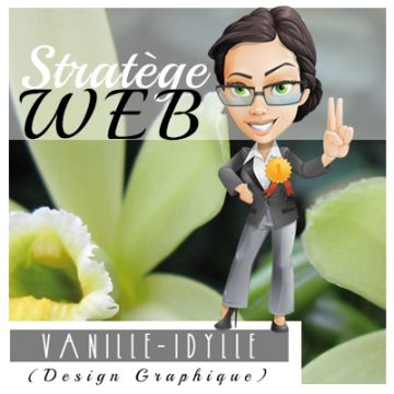 stratege-web-pour-conception-et-referencement-de-site-web-a-quebec